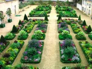 Great Orangery Garden