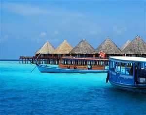 trip to the maldives