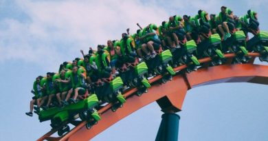 enjoy roller coaster