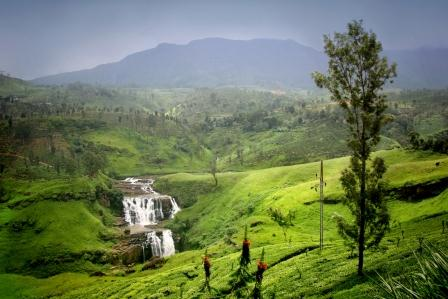 travel to sri lanka